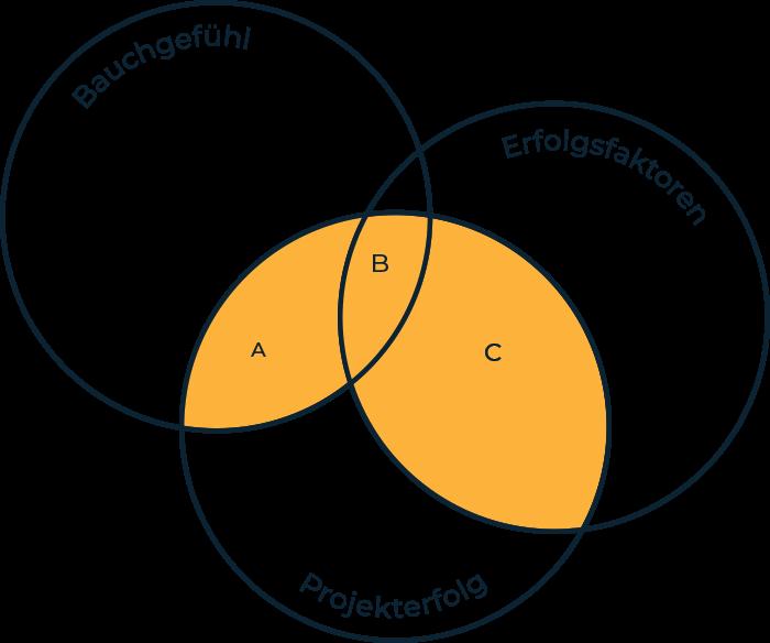 Matrix Überschneidung von Bauchgefühl, Erfolgsfaktoren, Projekterfolg